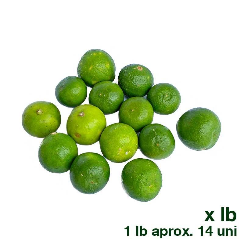 Limón Común orgánico x Lb Finca Bello Horizonte