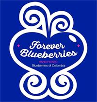 logo-forever-blueberries