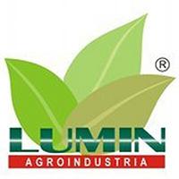 logo-lumin-curcuma