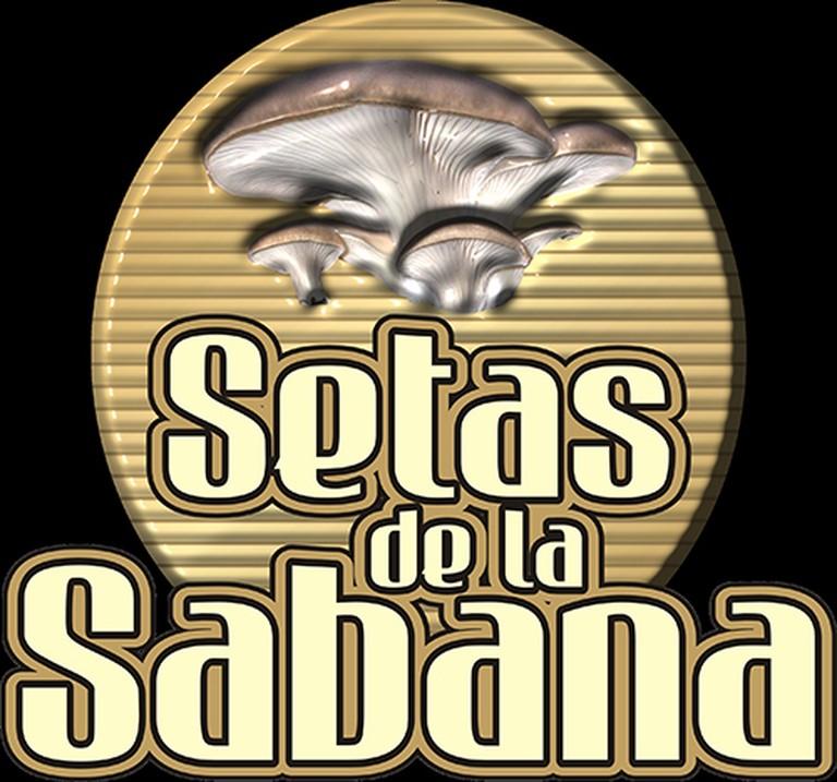 SETAS DE LA SABANA